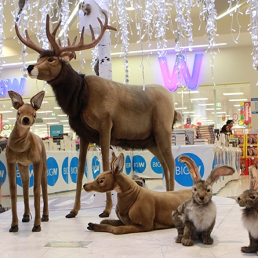 Shopping Centre Christmas Displays